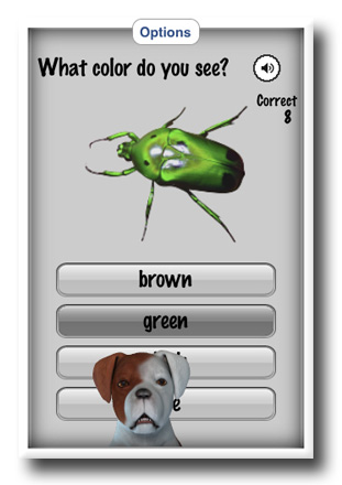 Question Screenshot from Shape and Colors